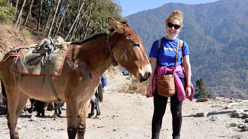 Karolina standing by a donkey on the trek during her Nepal trip with VoluntEars