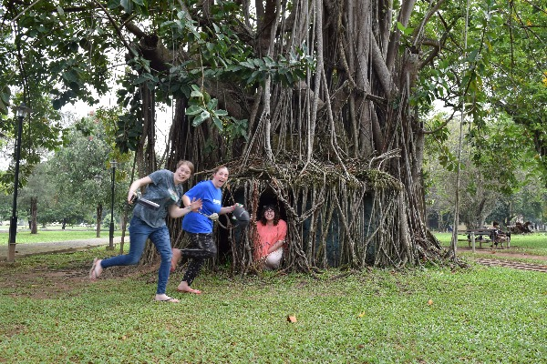 Lara, other volunteers and a huge tree in a park in Colombo!